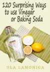 120 Surprising Ways To Use Vinegar And Baking Soda