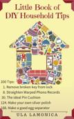 Little Book of DIY Household Tips