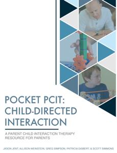 Pocket PCIT Book Review