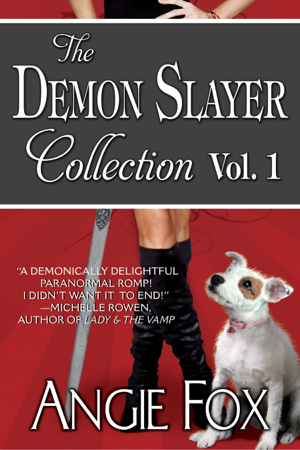 Accidental Demon Slayer Boxed Set Vol I (Books 1-3) - Angie Fox