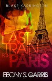 Last Train For Paris