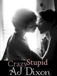 Crazy Stupid