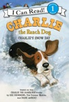 Charlie The Ranch Dog Charlies Snow Day