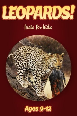 Leopard Facts For Kids 9-12
