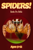 Spider Facts For Kids 9-12
