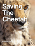 Saving The Cheetah
