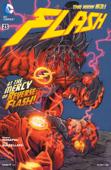 The Flash (2011- ) #23