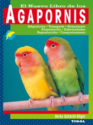 Agapornis aves inseparables