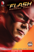 The Flash: Season Zero (2014-) #1
