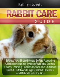 Rabbit Care Guide book