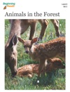 BeginningReads 9-2 Animals In The Forest