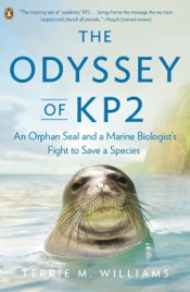 The Odyssey of KP2