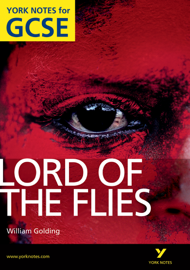 Lord of The Flies: York Notes for GCSE book