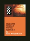 Aphex Twins Selected Ambient Works Volume II