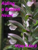 Aiding a Broken Heart: A Love Story