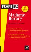 Profil Madame Bovary (Flaubert)