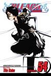 Bleach Vol 54