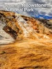 Pictures from Yellowstone National Park