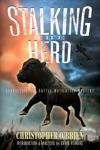 Stalking The Herd
