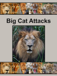 Big Cat Attacks