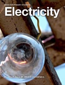 Electricity - Jake Peterson, Oliver Smart, Adrian Lo & Oscar Bradstock Forgan