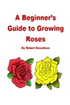 A Beginners Guide To Growing Roses
