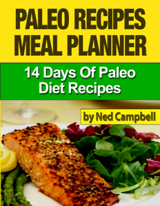 Paleo Recipes Meal Plan: 14 Days Of Paleo Diet Recipes Book Review