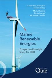 Marine Renewable Energies