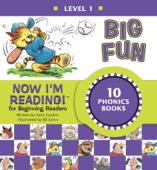 Now I'm Reading! Level 1: Big Fun