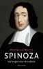 Maarten van Buuren - Spinoza kunstwerk