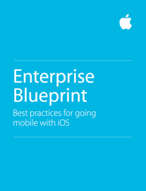 Enterprise Blueprint book