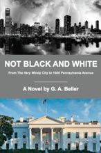 Not Black And White: From The Very Windy City To 1600 Pennsylvania Avenue
