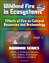 Wildland Fire in Ecosystems: Effects of Fire on Cultural Resources and Archaeology (Rainbow Series) Part 1 - Effects on Prehistoric Ceramics, Stone Artifacts, Rock Images, Fire Behavior and Effects