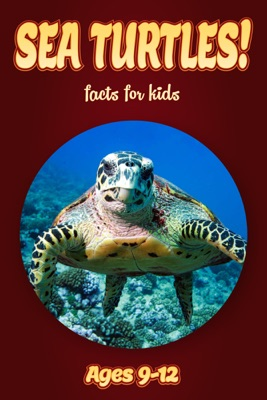 Sea Turtle Facts For Kids 9-12