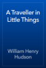 William Henry Hudson - A Traveller in Little Things artwork