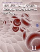 Renin Angiotensin Aldosterone System in the Dog