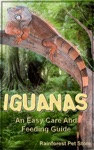 Iguanas An Easy Care And Feeding Guide