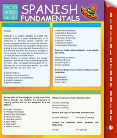 Spanish Fundamentals 1 Study Guide