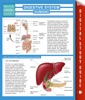 Digestive System (Humans) (Speedy Study Guides)