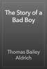 Thomas Bailey Aldrich - The Story of a Bad Boy artwork