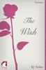 RJ Nolan - The Wish artwork