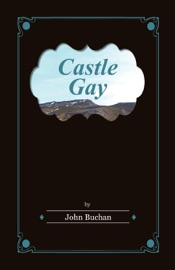 Download and Read Online Castle Gay
