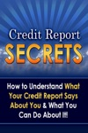 Credit Report Secrets How To Understand What Your Credit Report Says About You And What You Can Do About It