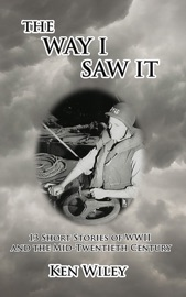 The Way I Saw It PDF Download
