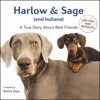 Harlow  Sage And Indiana