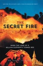 The Secret Fire