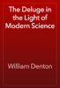 William Denton - The Deluge in the Light of Modern Science artwork