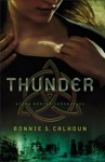 Thunder Stone Braide Chronicles Book 1