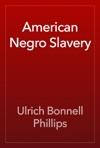 American Negro Slavery