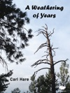 A Weathering Of Years